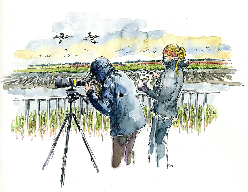 Auf dem Vogelturm am Vareler Hafen. © Isa Fischer