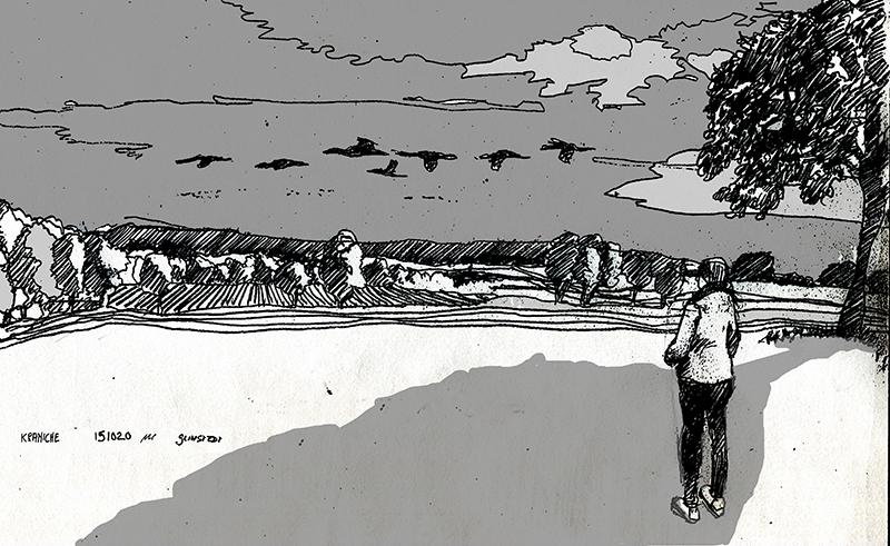 Nach vier Tagen im Wattenmeer ließen die Zugvögel den Zeichner auch auf dem Heimweg nach Bremen nicht los: Kraniche über dem Teufelsmoor. © Manfred Schlösser