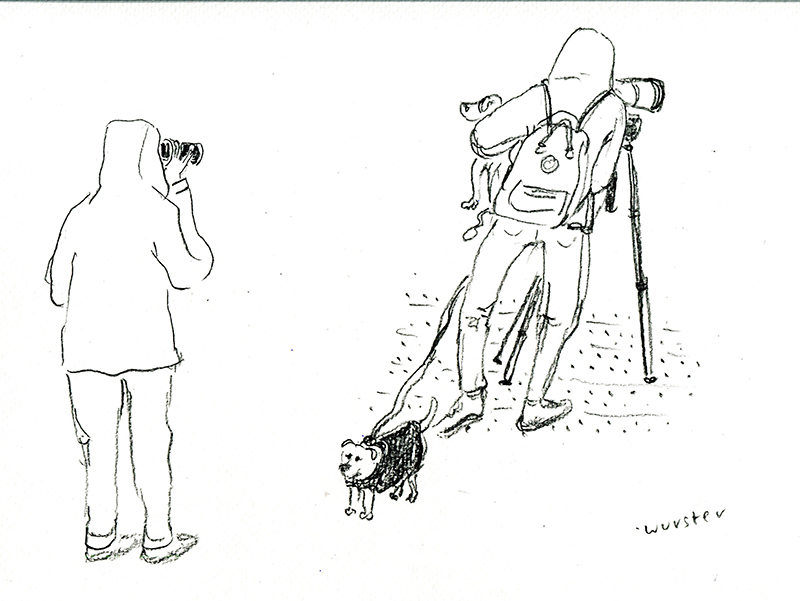 Vogelkieker mit Hund. © Miriam Wurster
