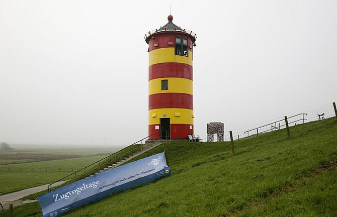 Zugvogeltage am Pilsumer Leuchtturm