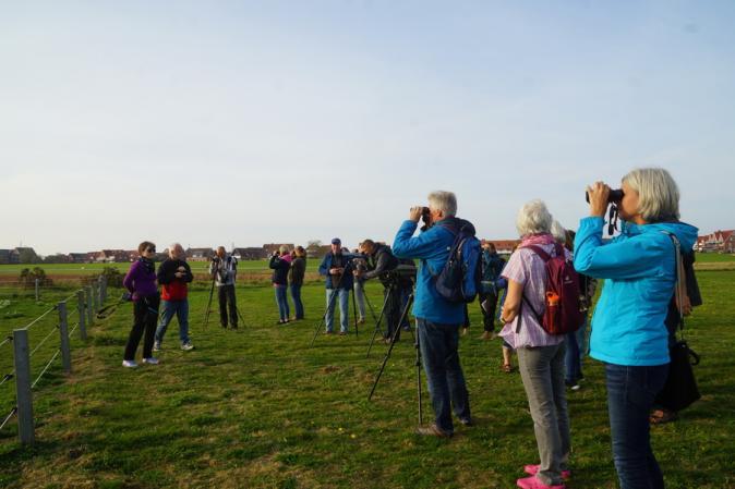 Gruppe Vogelbeobachter auf Baltrum
