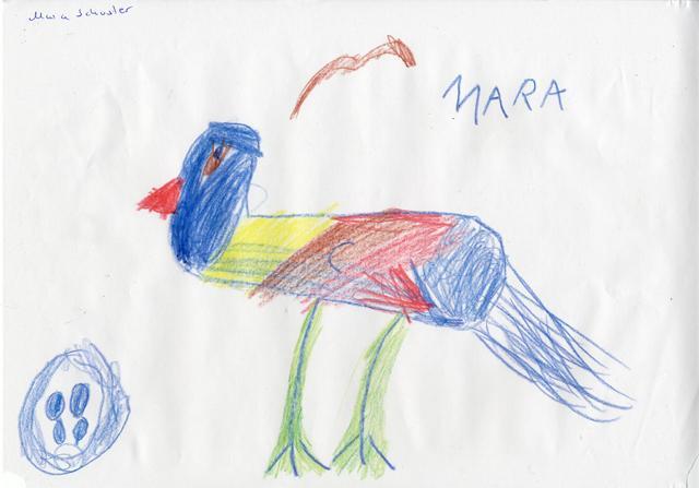 Mara 7