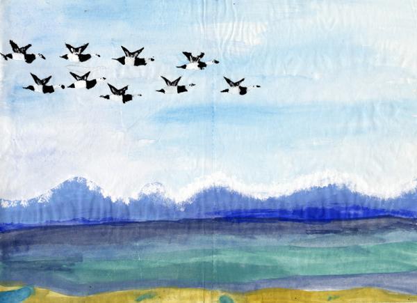 Dieses Bild von Weißwangengänsen malte die 8jährige Gabriela für die Kinderaktion 2013.