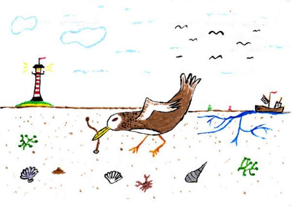 Bild aus der Kinderaktion der 5. Zugvogeltage von Gerrik, 11 Jahre