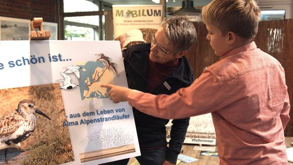 Angebote für Kinder auf dem Zugvogelfest. Foto: Dieter Harms