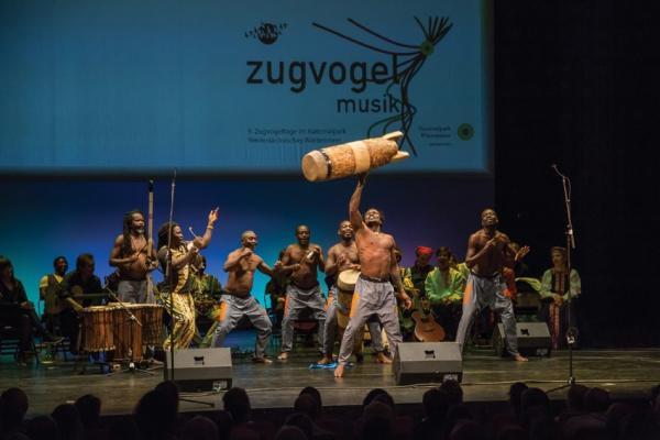 Auch in diesem Jahr gehören Wakassa mit kongolesischer Musik zum line-up des Zugvogelmusik-Konzerts. Foto: Melanie Stegemann