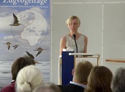 Einführung von der Kunstwissenschaftlerin Birgit Denizel