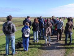 Fahrradtour mit Vogelbeobachtung zum Borkumer Ostland