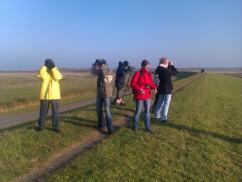Die Teilnehmer beim Vögelbeobachten