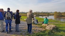 Zugvogelbeobachtung an der Elbe. Foto: Niemann / WattBZ Cuxhaven