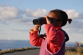 Kind mit Fernglas beobachtet Vögel