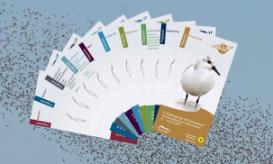 Programmhefte 8. Zugvogeltage im Nationalpark Nds.Wattenmeer